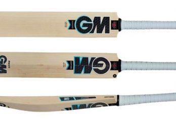 Top 10 Best Cricket Bats in the World